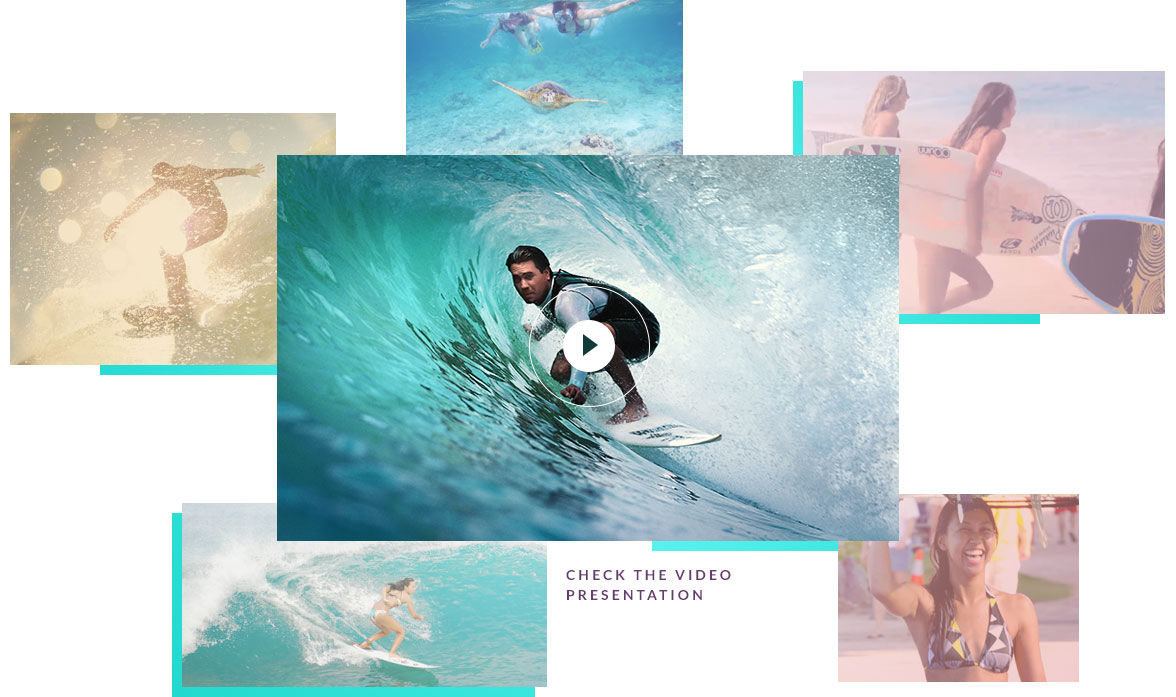 home_surfing_company_hover_box2